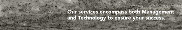 Our services encompass both Management and Technology to ensure your success.